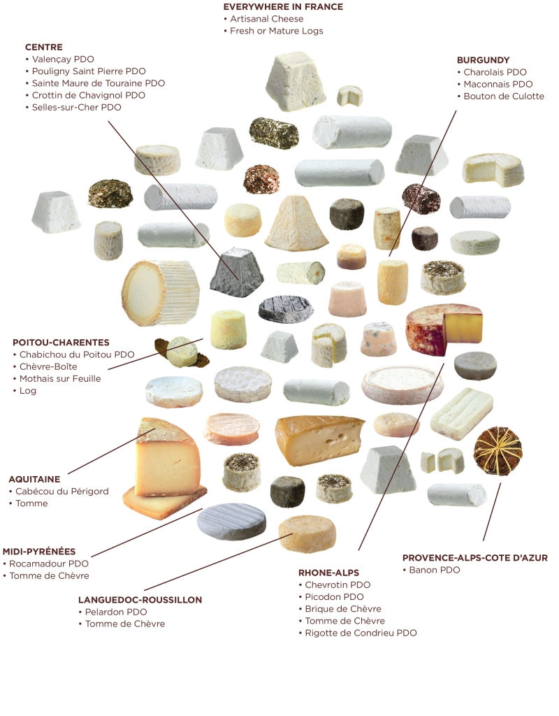 French goat cheese infographic